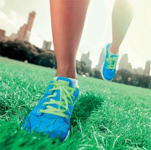 mayis-2013-fitness-raporu-resim-1